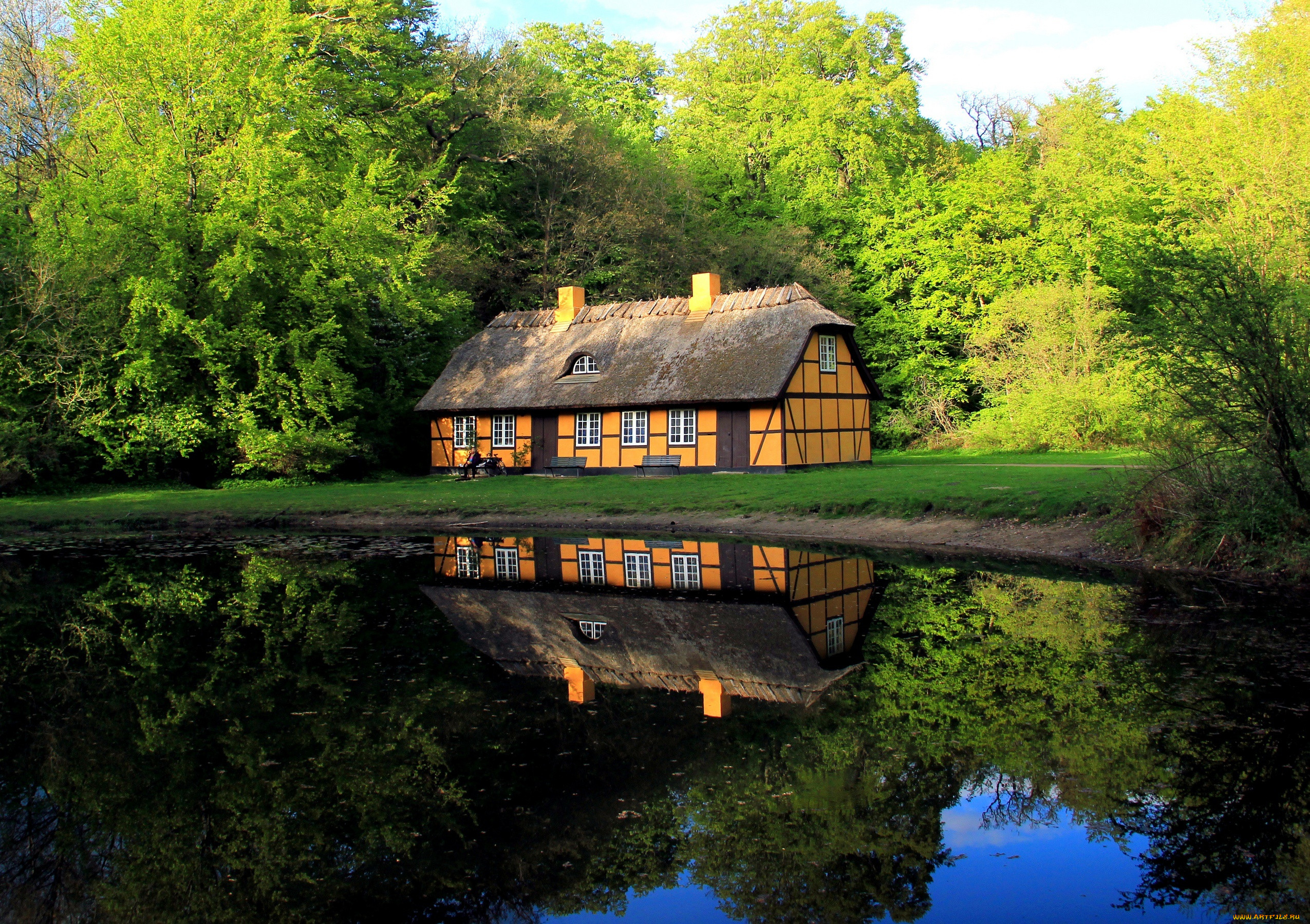 родились врожденным фотографии домик у реки серыми глазами
